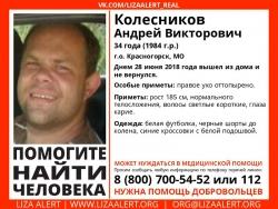 Разыскивается мужчина Колесников Андрей Викторович (34 года), о котором с 28 июня 2018 года информации нет.